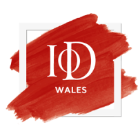 Wales Director of the Year Awards